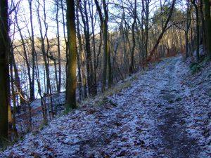 leicht eingeschneiter Weg am Caputher See