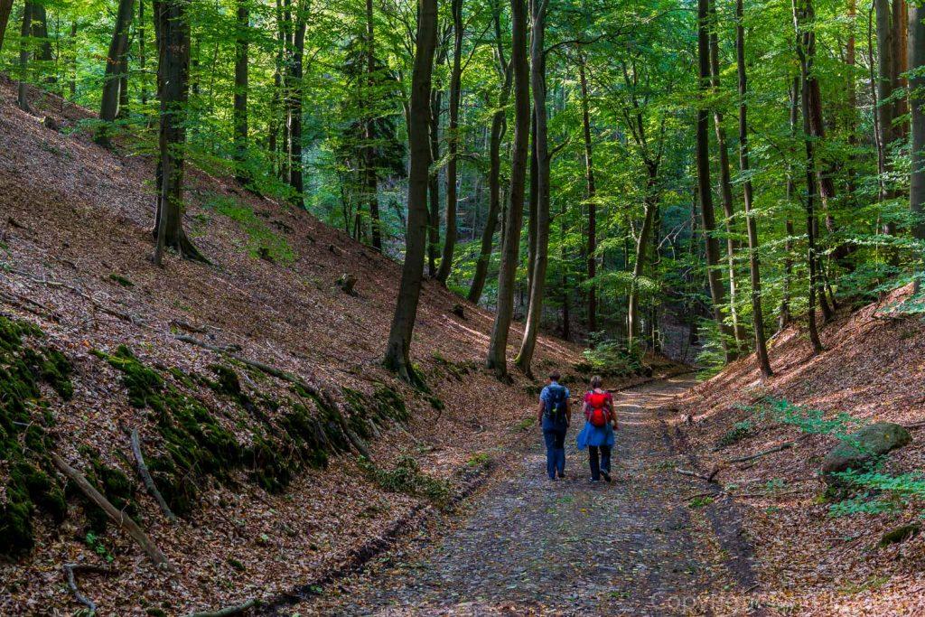 Wanderinnen auf Kehlweg