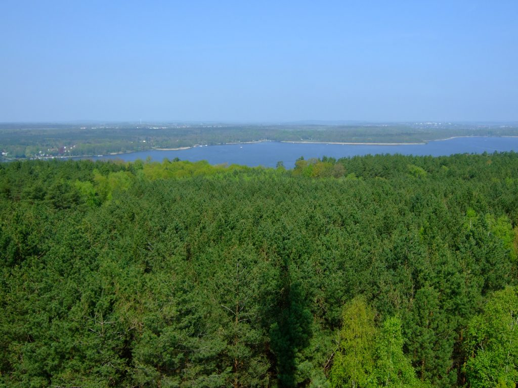 Blick über die Wälder des Wietkiekenberges und den Schwielowsee