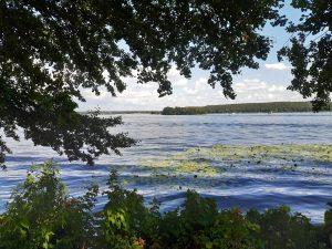 Blick über die Havel auf die Pfaueninsel