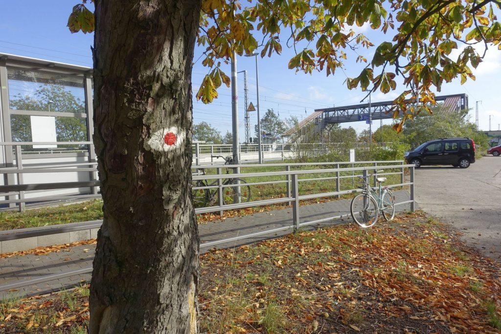 F5-Markierung am Bahnhof Saarmund
