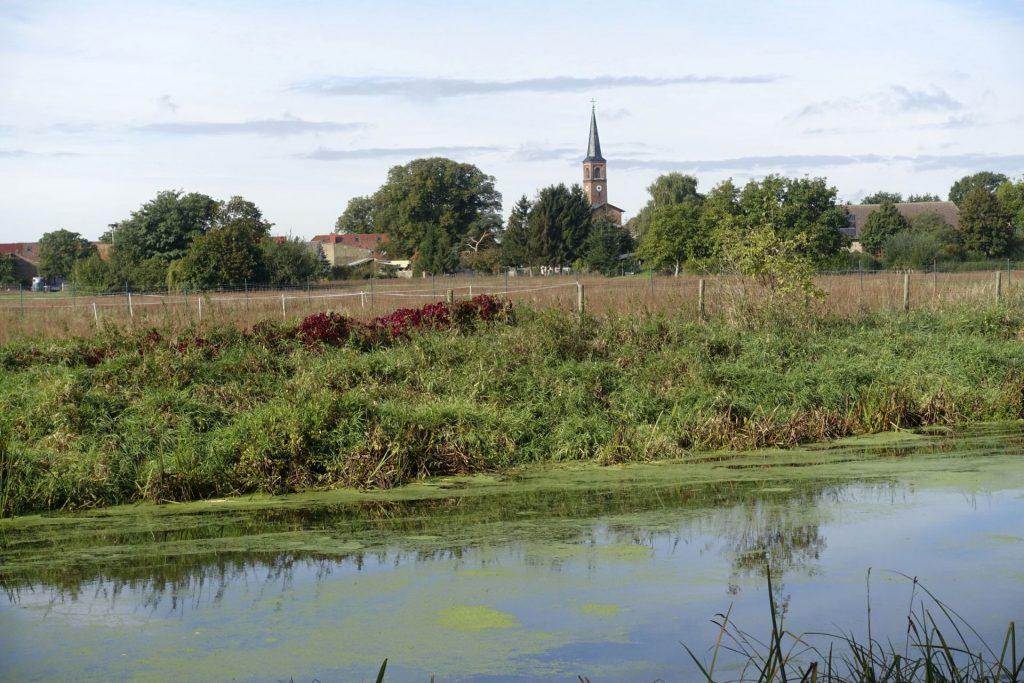 Blick auf Saarmund