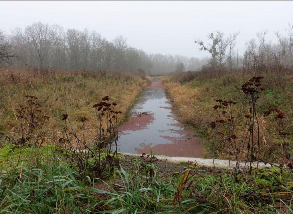 Kanal bei Nudow im Winter