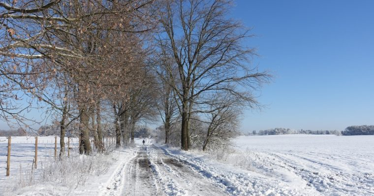 Wander-Touren für den Winter