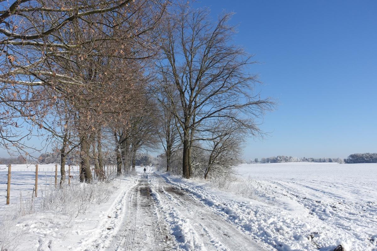 Wander-Touren für den Winter