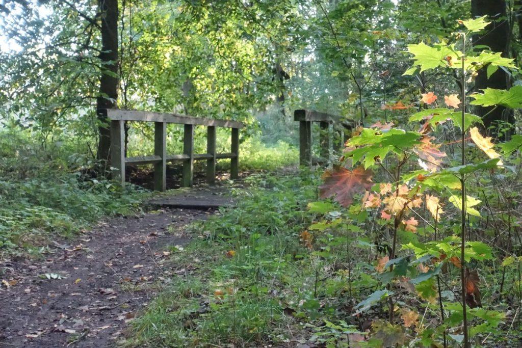 Holzbrücke über das Mühlenfließ